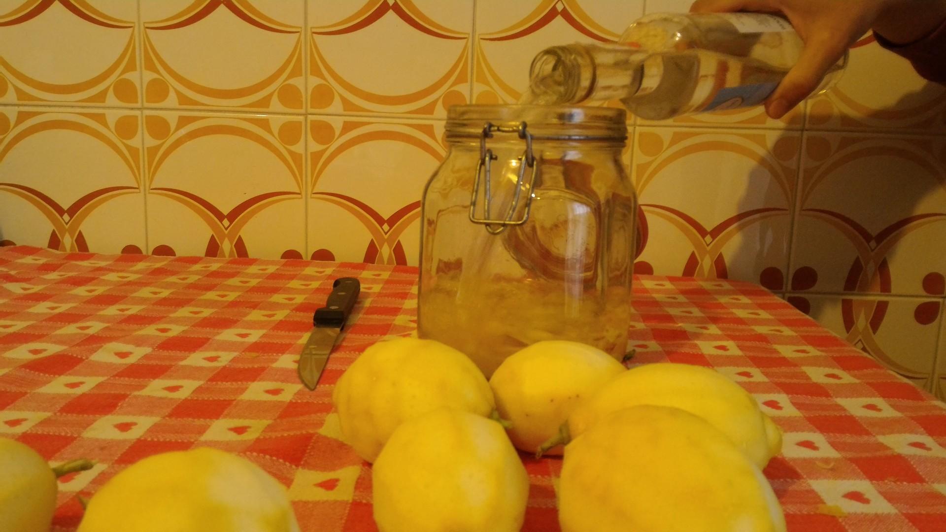 twenty-days-limoncello-dfeddfe0175bf6ac3