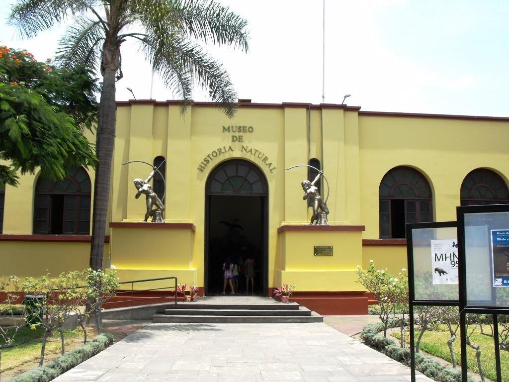 un-museo-flora-fauna-lima-c7b5a9b2d19ed0