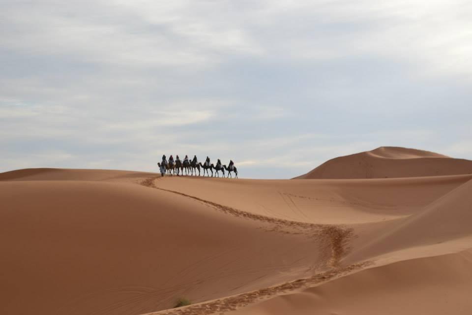 una-noche-desierto-03ac10888a28270c6ab96