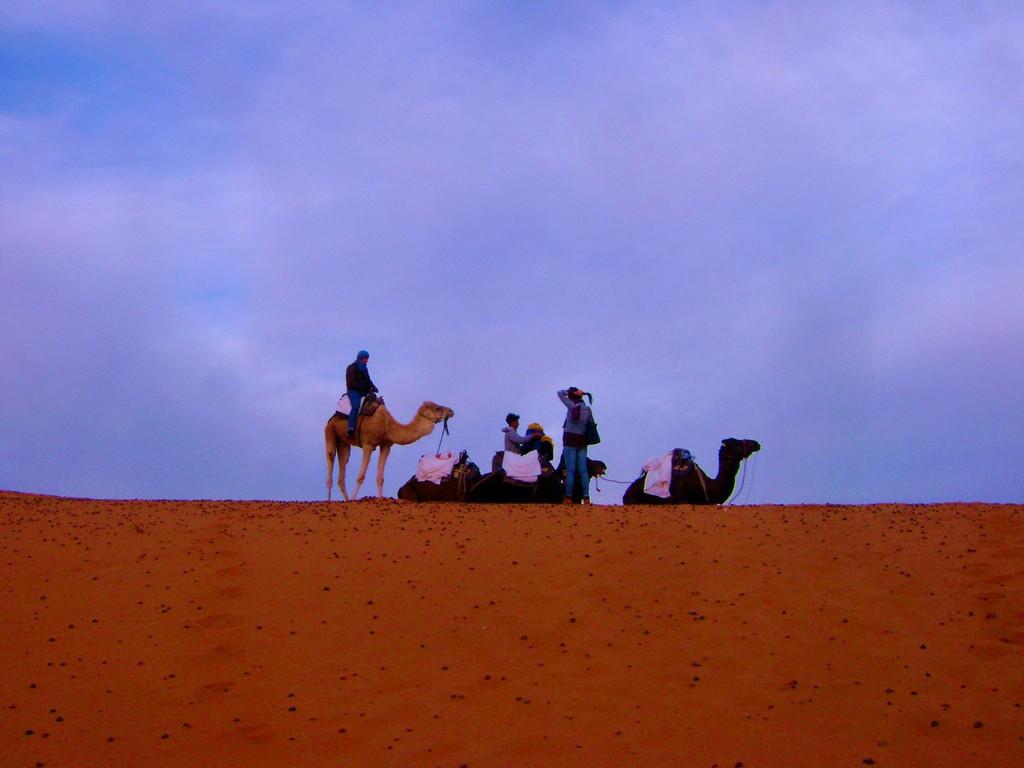 una-noche-desierto-b4d6dd77f24e9d89bc386