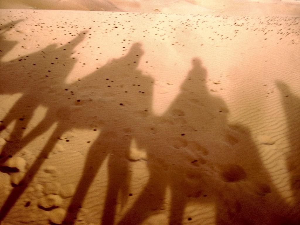 una-noche-desierto-c4683e88df78ef1584b17