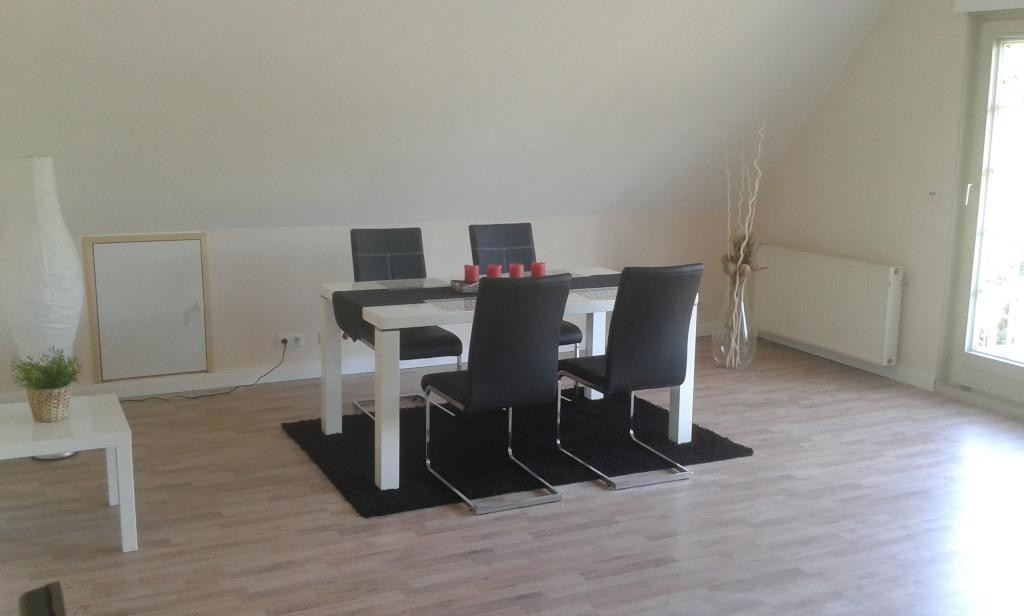 Very Nice Upscale 3 Bedroom Apartment - Working Professionals On