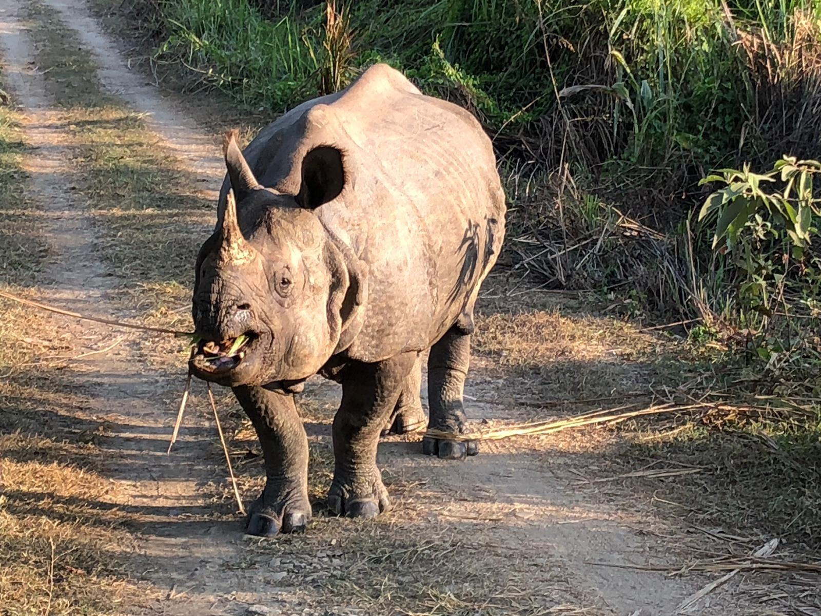 viaggio-in-nepal-ce4cac144b35d3abcd0bd45