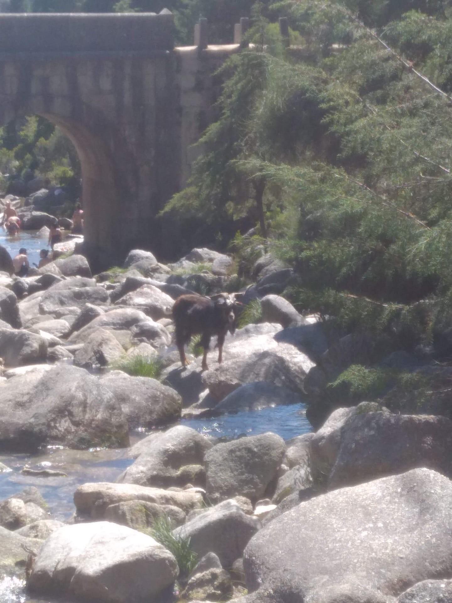 visite-parc-santo-inacio-chute-deau-merv
