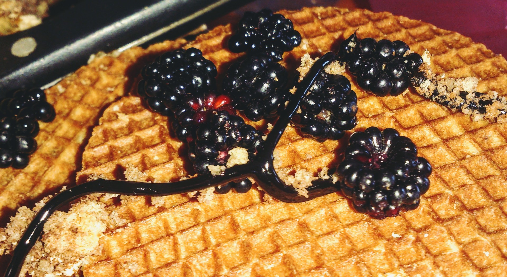 waffles-wafers-0b6cd236f480f9c369343ffcf