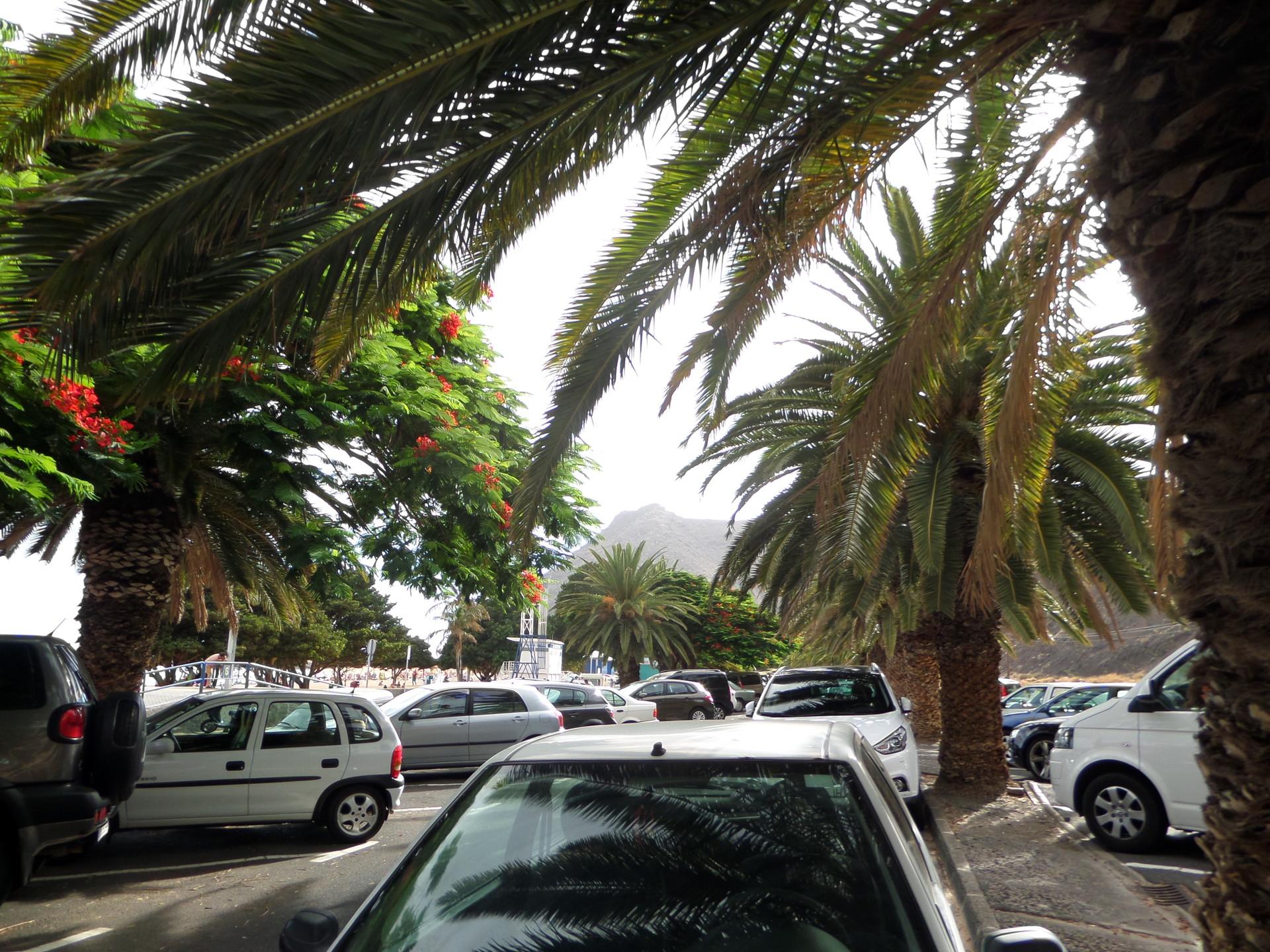 welcome-paradise-playa-las-teresitas-0d3