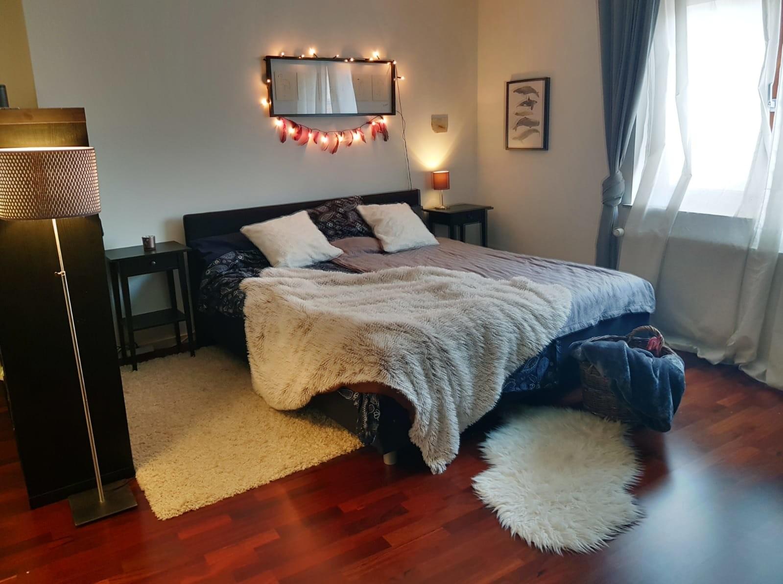 Whole luxury flat for 2-4 People incl. Bathroom,Kitchen,Floor he