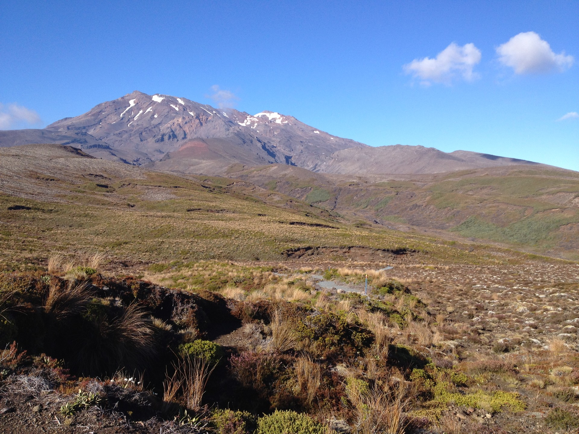 Work & Travel in New Zealand, Part 1