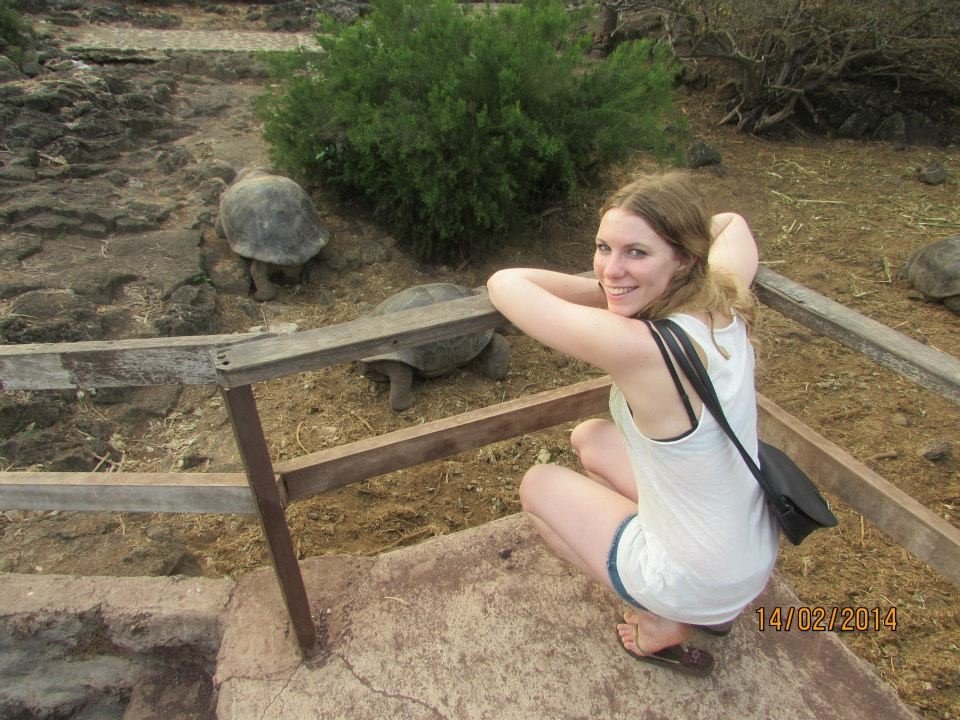 Zagrożony gatunek: żółw z Galapagos w naturalnym środowisku
