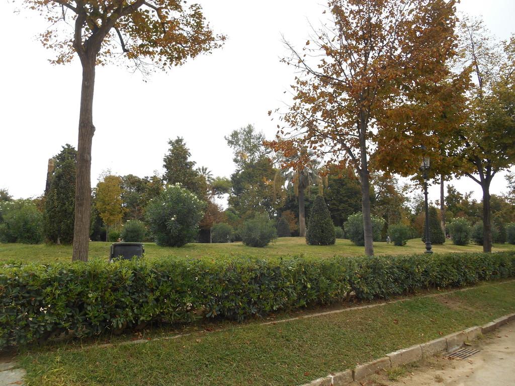 Zona verde en Barcelona